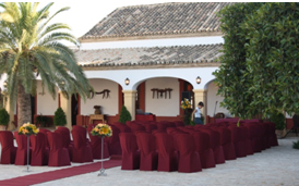 decoracion-pasillo-boda-sevilla