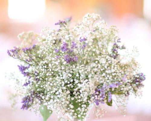 flores blancas hacienda sevilla