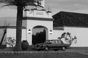 coche-boda-sevilla-chamorro